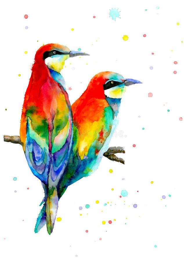 Deux oiseaux colorés se reposant sur la branche et regardant la même direction Oiseaux d'amour et un arbre Illustration d'aquarel illustration de vecteur