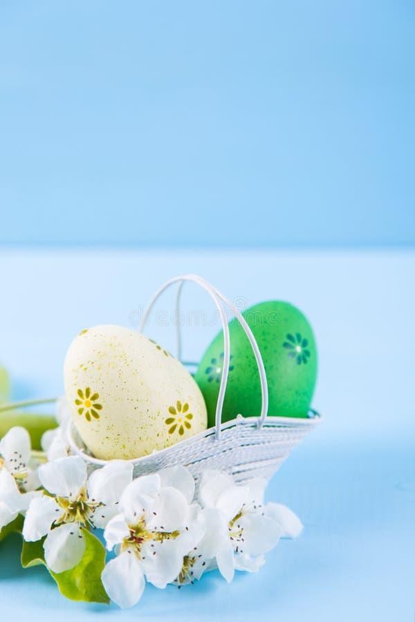 Deux ont peint les oeufs de p?ques jaunes et verts dans le panier avec les fleurs blanches de cerise de ressort sur le fond bleu- photo libre de droits