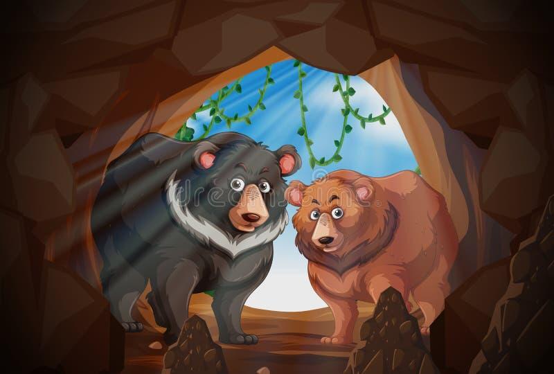 Deux ours dans une caverne illustration stock