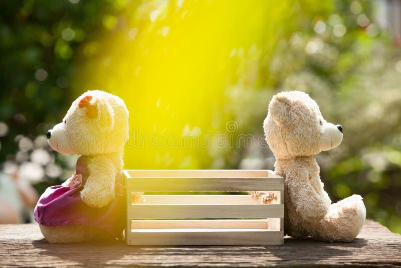 Deux ours de nounours sentant la séance navrée vis-à-vis d'une boîte en bois au milieu photographie stock libre de droits