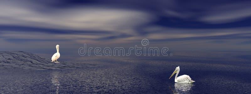 Deux pélicans par nuit illustration libre de droits