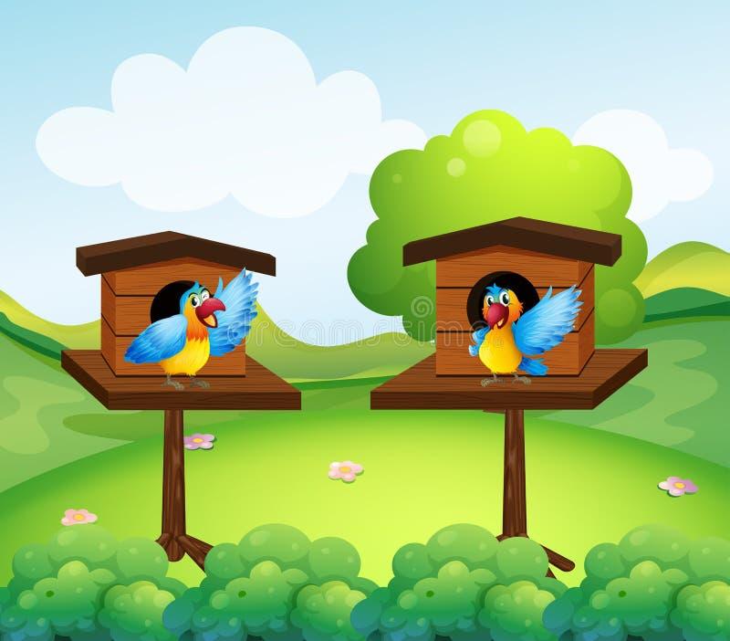 Deux perroquets dans la volière illustration libre de droits