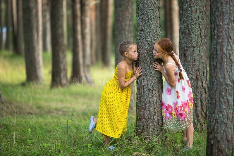 Download Deux Petites Amies Mignons En Parc De Pin Marche Photo stock - Image du fille, garçon: 76077328