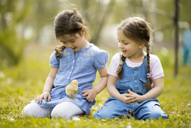Deux petites filles avec des poulets photo stock
