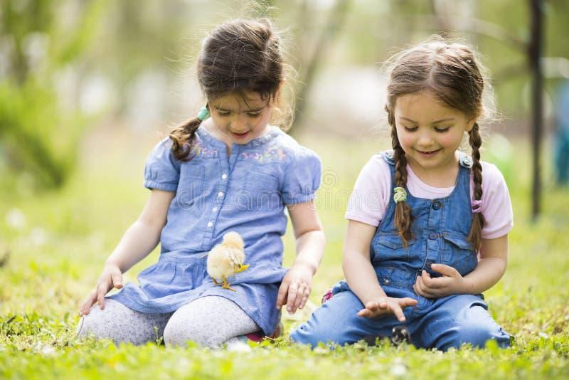 Deux petites filles avec des poulets images libres de droits