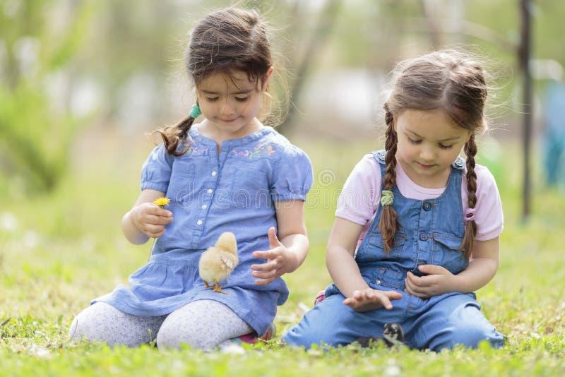 Deux petites filles avec des poulets images stock