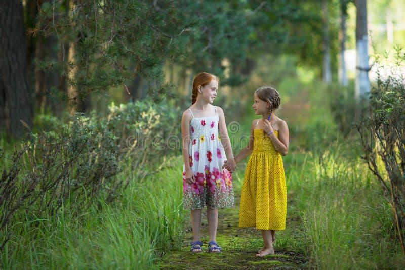 Deux petites filles mignonnes parlant en parc Marche photographie stock libre de droits