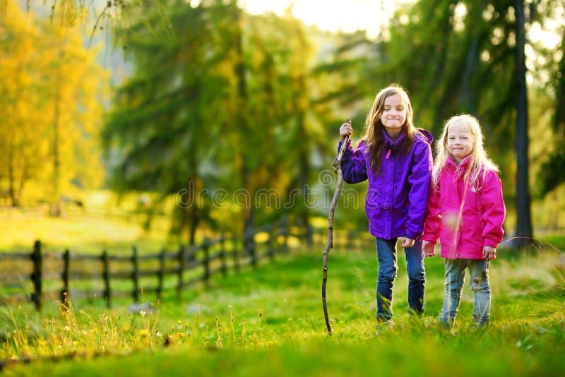 Deux petites soeurs drôles ayant l'amusement pendant la hausse de forêt le beau jour d'automne photographie stock