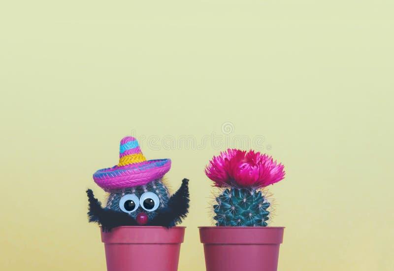 Deux petits cactus dans un pot de fleurs sur un fond jaune à la mode photo libre de droits