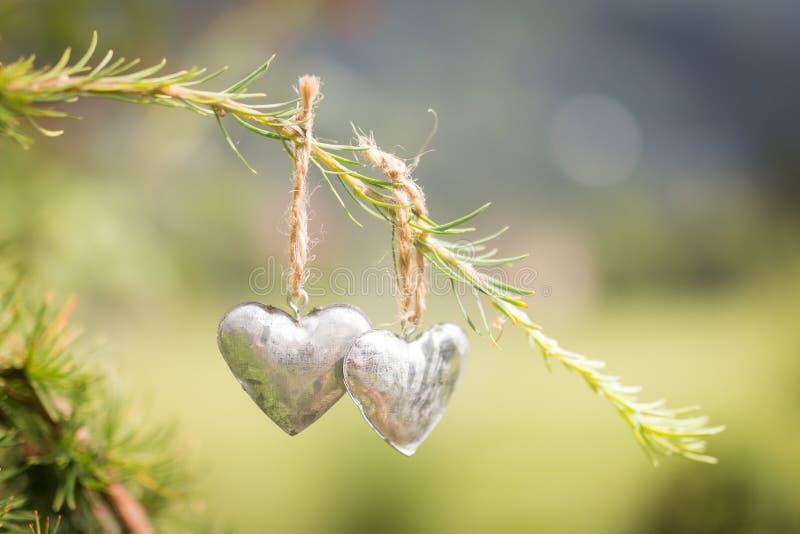 Deux petits coeurs en métal accrochant sur un conifère vert s'embranchent sur une ficelle brune avec le jardin à l'arrière-plan photographie stock libre de droits