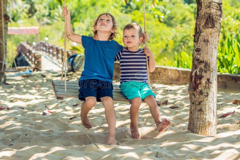 Deux petits garçons blonds ayant l'amusement sur l'oscillation sur la côte arénacée tropicale images libres de droits