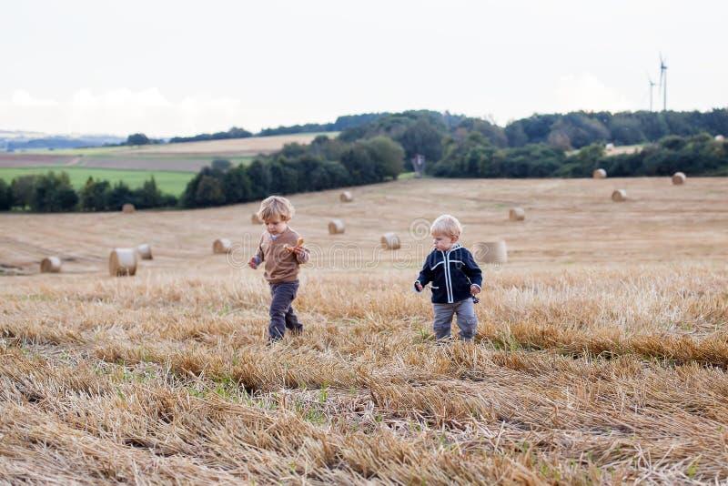 Deux petits garçons d'enfant en bas âge jouant sur le gisement de paille photographie stock libre de droits
