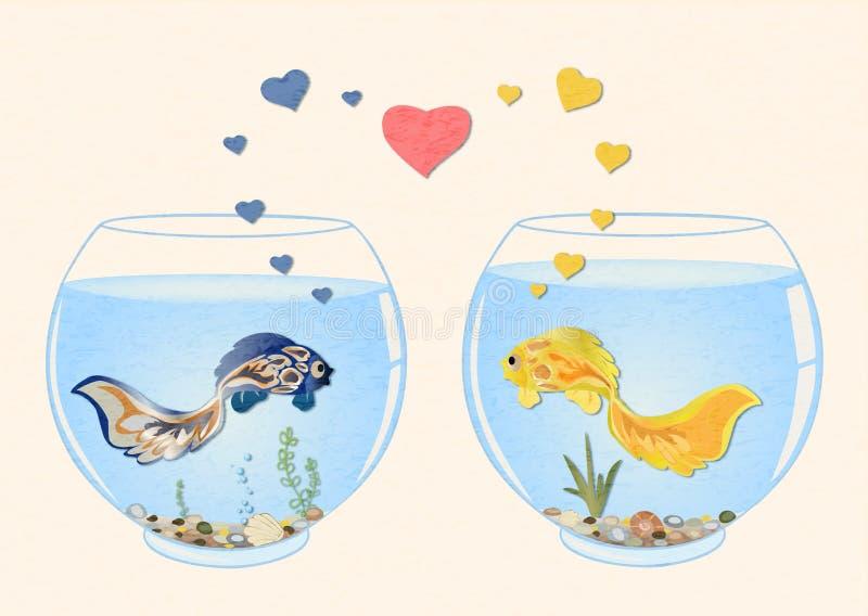 Deux poissons mignons dans l'amour, ils nagent dans différents aquariums, regardent l'un l'autre images libres de droits