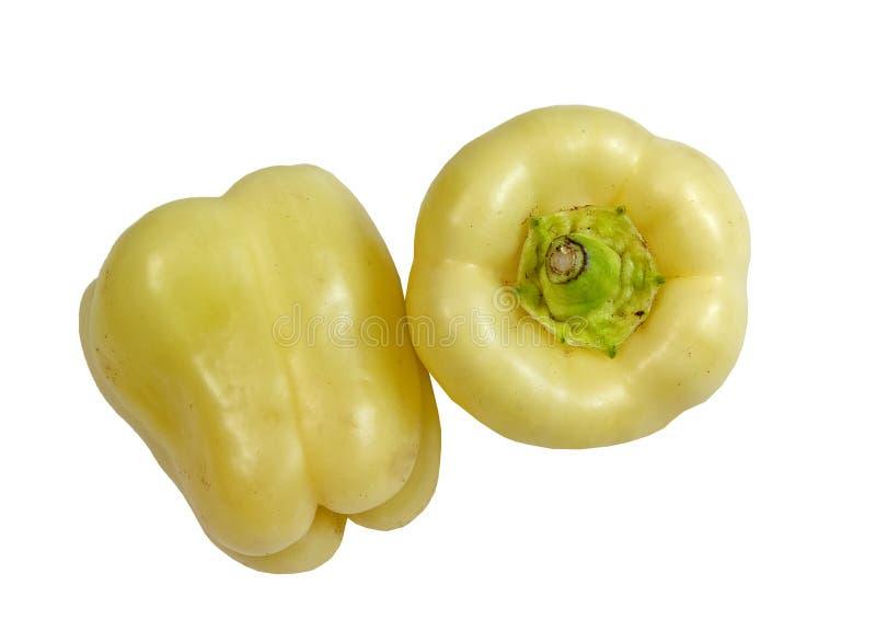 Deux poivres blancs frais photographie stock