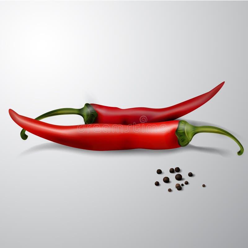 Deux poivrons de /poivron d'un rouge ardent illustration de vecteur