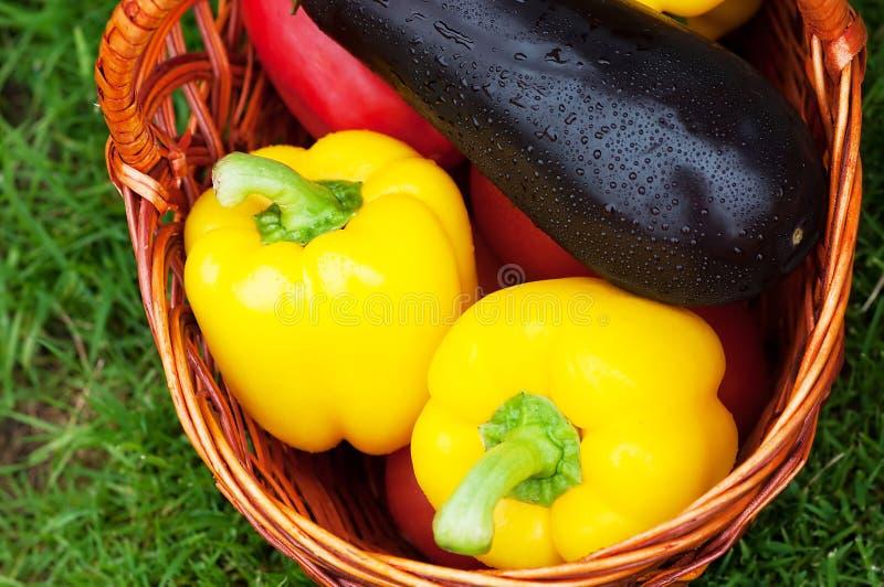 deux poivrons et aubergines jaunes dans un panier moisson image stock