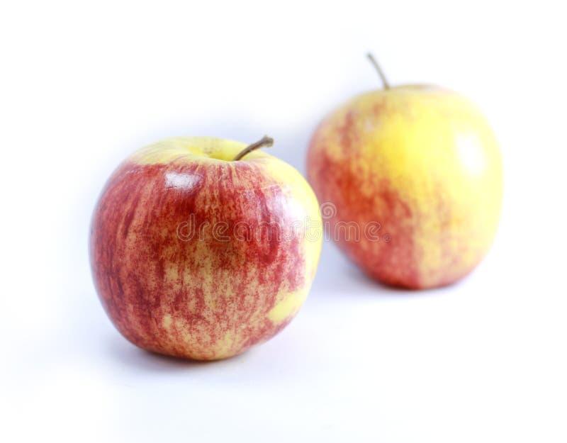 Deux pommes au-dessus de blanc photos stock