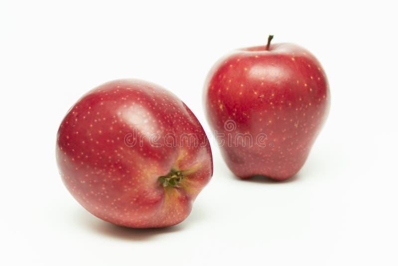 Deux pommes mûres rouges sur un fond blanc photo libre de droits