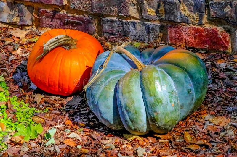 Deux potirons décoratifs par le mur de briques sur des feuilles d'automne photographie stock libre de droits