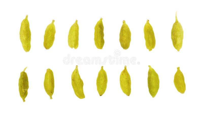 Deux rangées des graines vertes de cardamome images stock