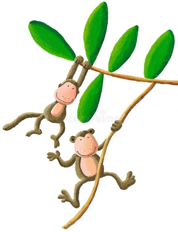 Deux singes illustration stock
