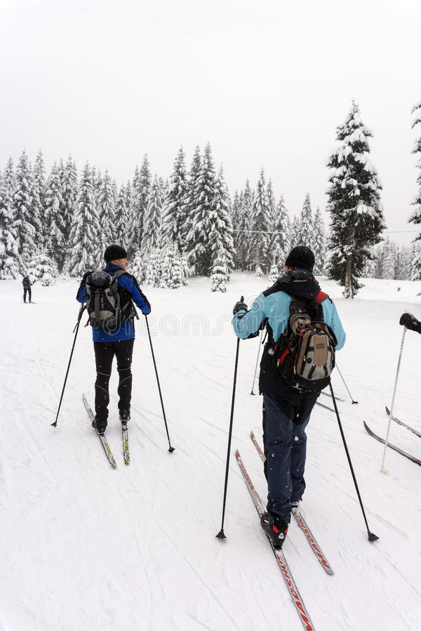 Deux skieurs masculins non identifiés en tournée transnationale par temps neigeux images libres de droits