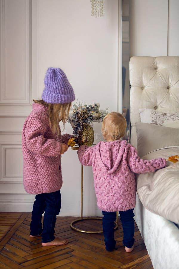 Deux soeurs dans les chandails et le chapeau sont de retour à la maison image libre de droits