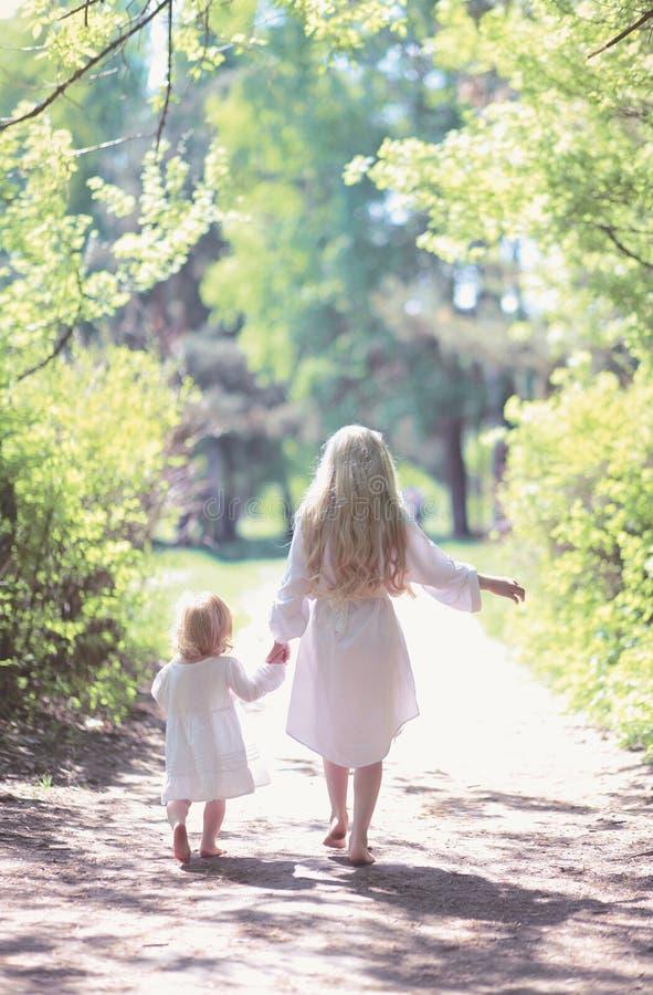 Deux soeurs tenant des mains marchant dans la forêt images libres de droits