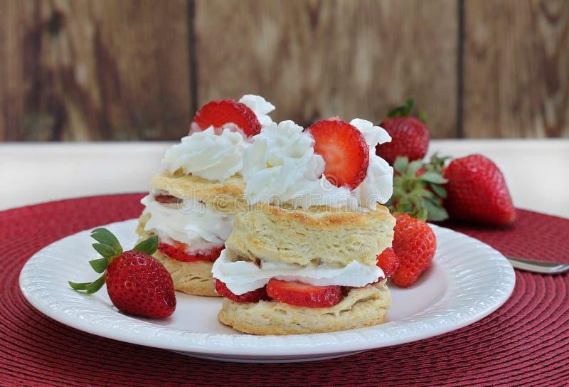 Deux tartes sablées de fraise avec la crème fouettée d'un plat blanc image libre de droits