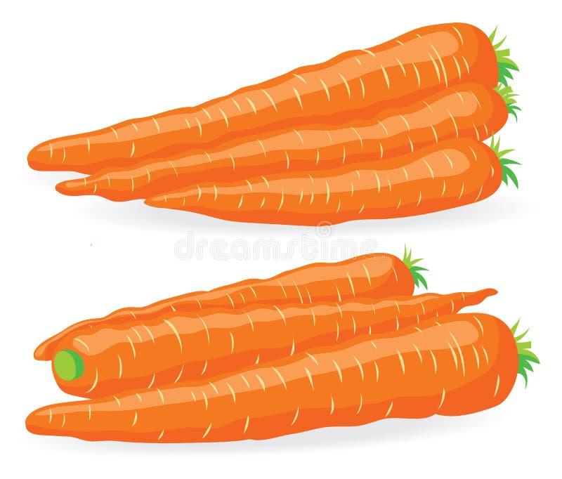 Deux tas de carotte fraîche illustration stock