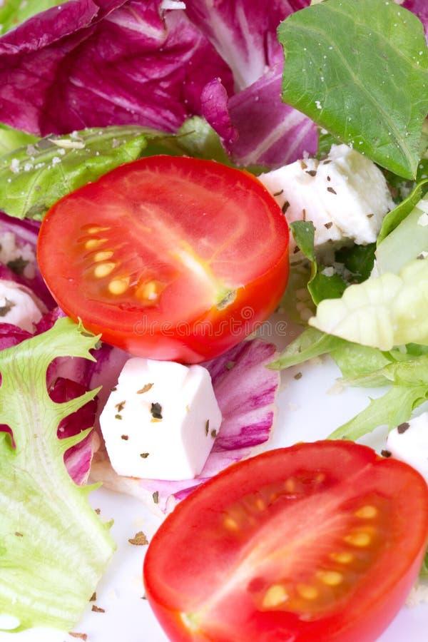 Deux tomotoes en salade photo libre de droits