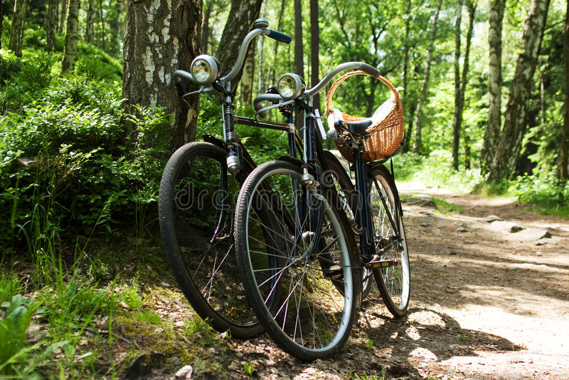 Deux vélos dans la forêt photographie stock