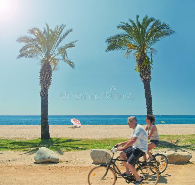 Deux vélos de monte de personnes le long de la plage avec des palmiers photos stock