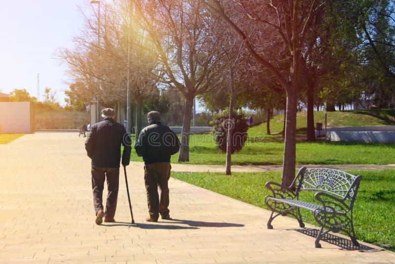 Deux vieux hommes marchant en parc photo stock