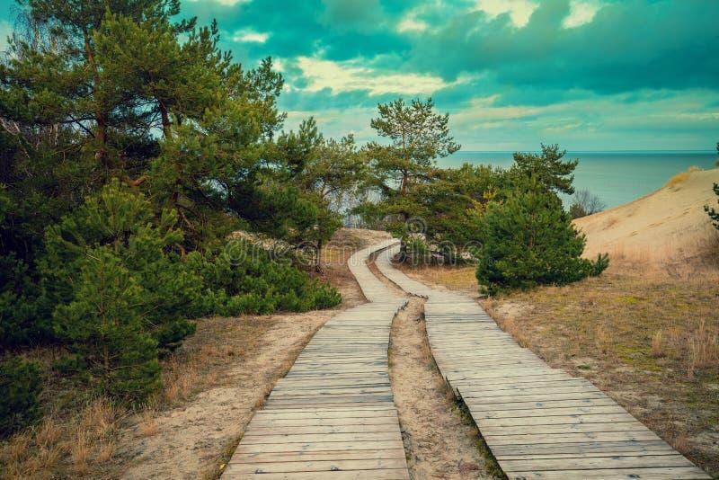 Deux voies en bois en parc photos stock