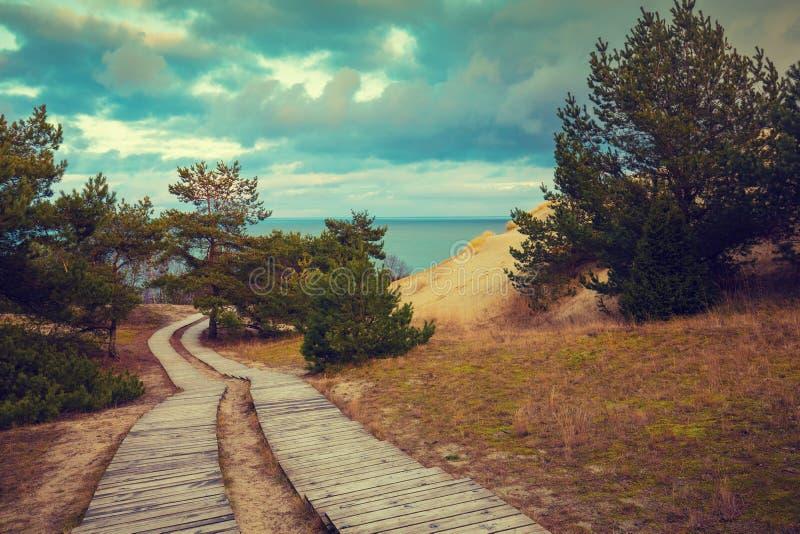 Deux voies en bois en parc photographie stock libre de droits