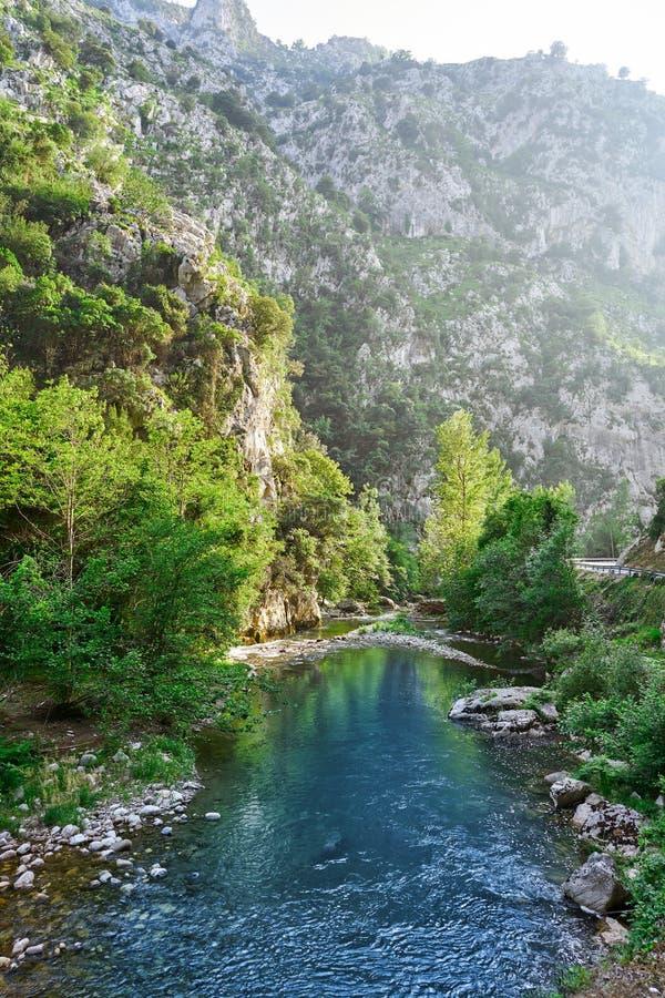 Deva rzeka w Cantabria Hiszpania obrazy royalty free