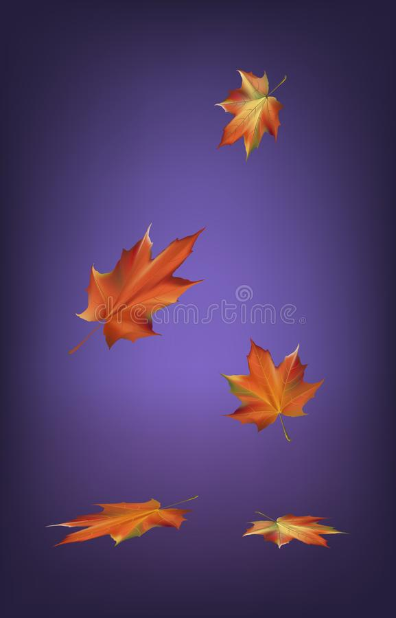 Autumn leaves fall season on background vector illustration