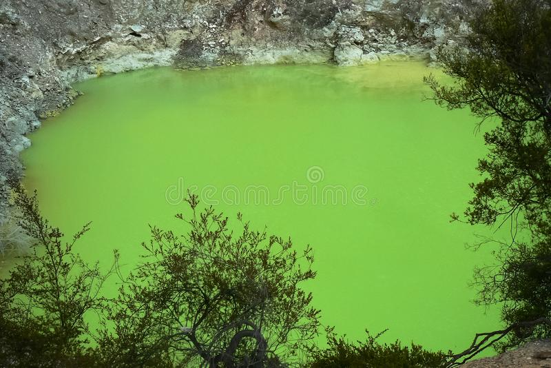 Devil`s Bath green pond at Wai-O-Tapu thermal wonderland, Rotorua, North Island, New Zealand. Lime green pool called Devil`s Bath at Wai-O-Tapu geothermal area stock photos