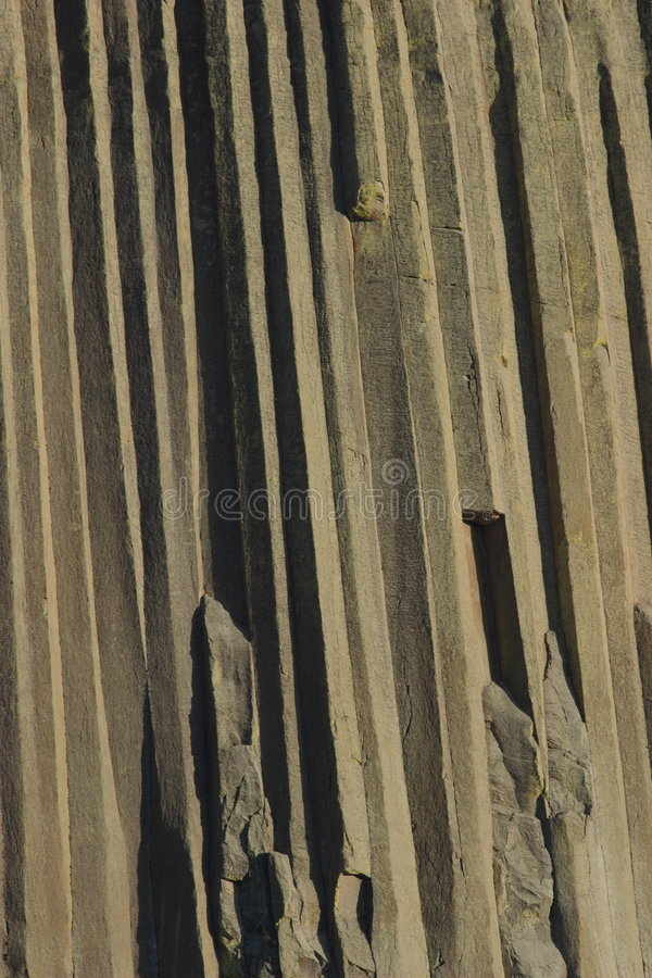 Download Devils Tower Rock stock image. Image of background, monument - 1413353