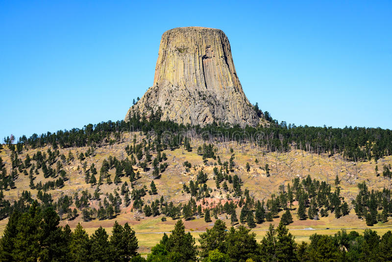Devils Tower. Wyoming Volcano Pines stock image