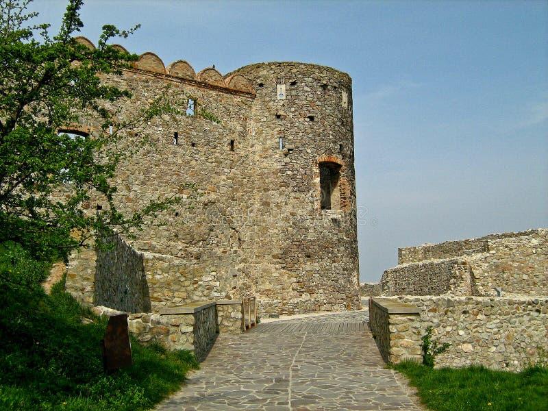 Devin Castle, Bratislava, Slowakije stock fotografie