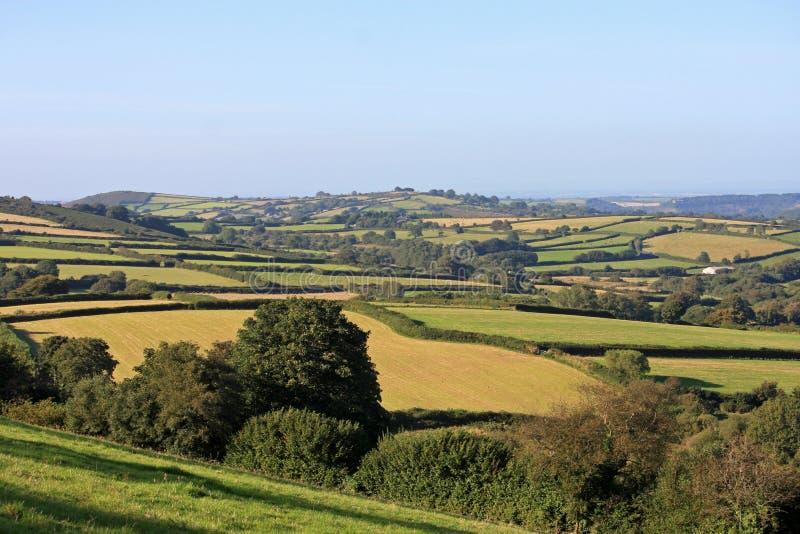 Devon Countryside photo stock