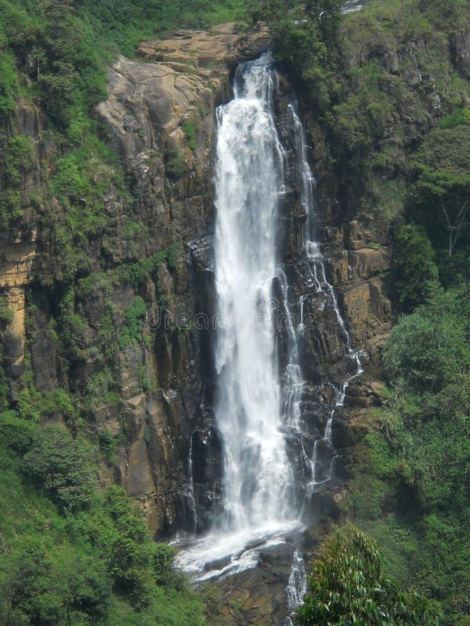 Devon Falls royalty free stock images