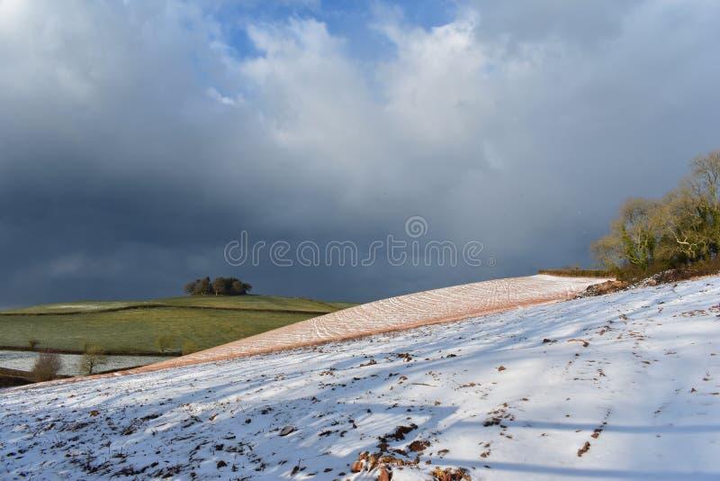 Devon-Feld mit heller Bedeckung des Schnees lizenzfreie stockfotografie