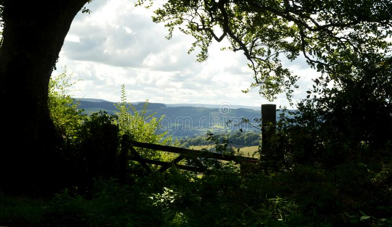 Devon hills with gate in foreground stock image