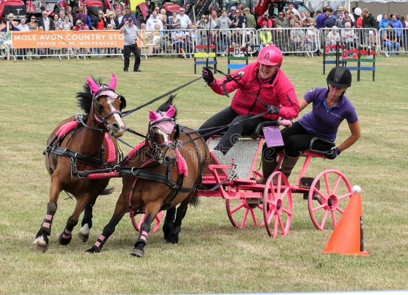 Devon, UK - July 30 2018: Scurry driving, equestrian time trials with carriages stock photography