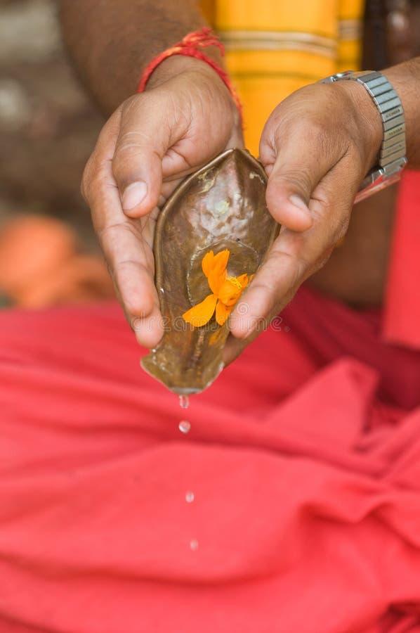 Devoto Hindu que praying fotos de stock