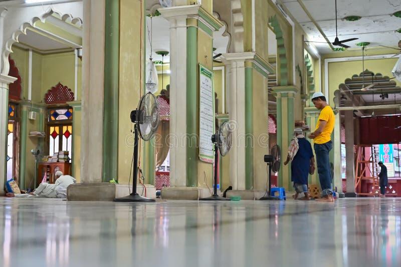 Devoto mu?ulmano que reza dentro de Nakhoda Masjid, Kolkata foto de stock royalty free