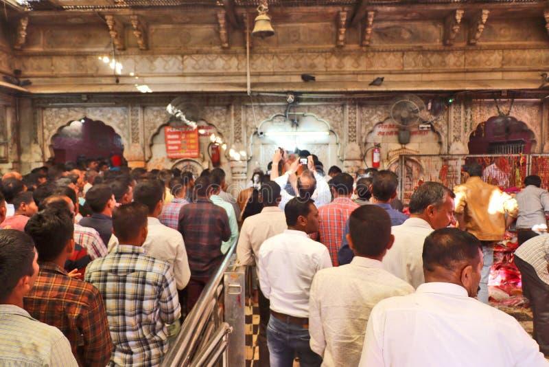 Devotos en el templo de Karni, Bikaner imagenes de archivo